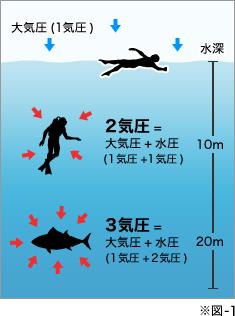 10mの深度でも陸上の2倍の水圧