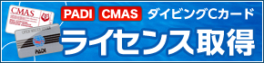 [PADI][CMAS]ダイビングCカード ライセンス取得!